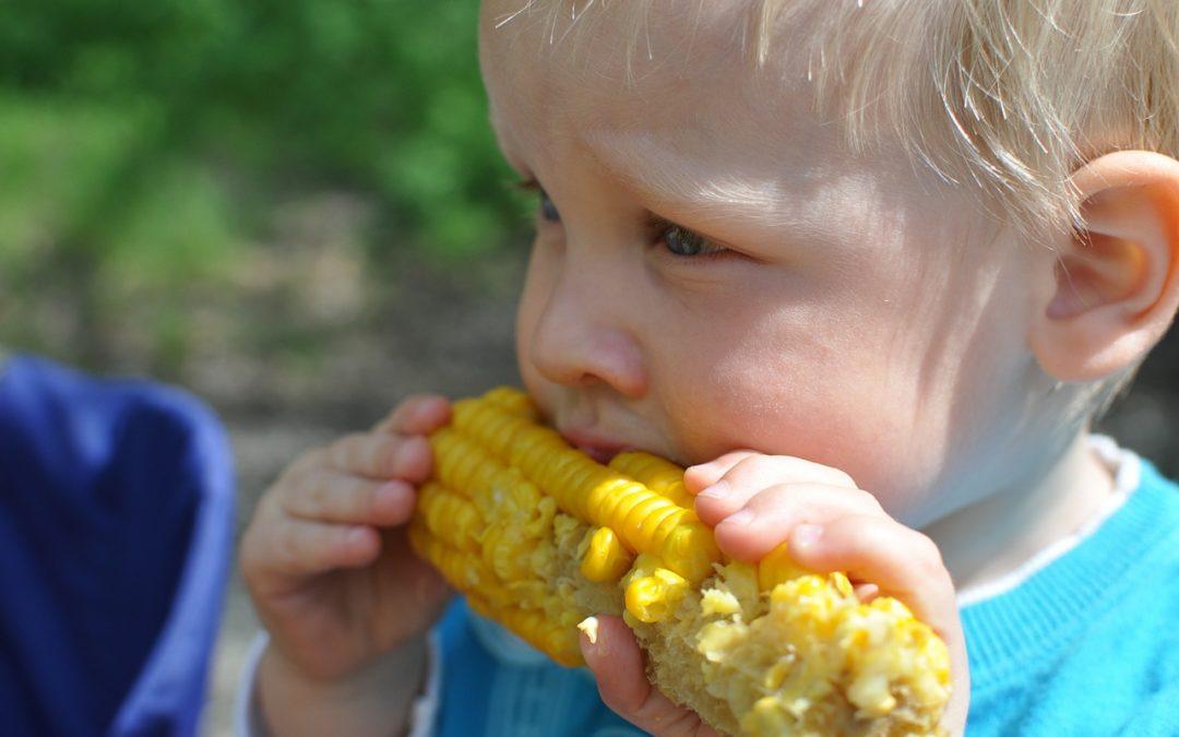 Sådan sikrer du børnenes varierede kost og hygge om spisebordet